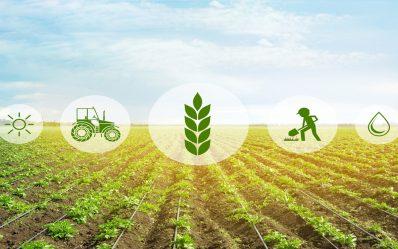 إدارة المزارع.. علم