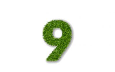9 معلومات أساسية عن مشروع «نخلاتي»