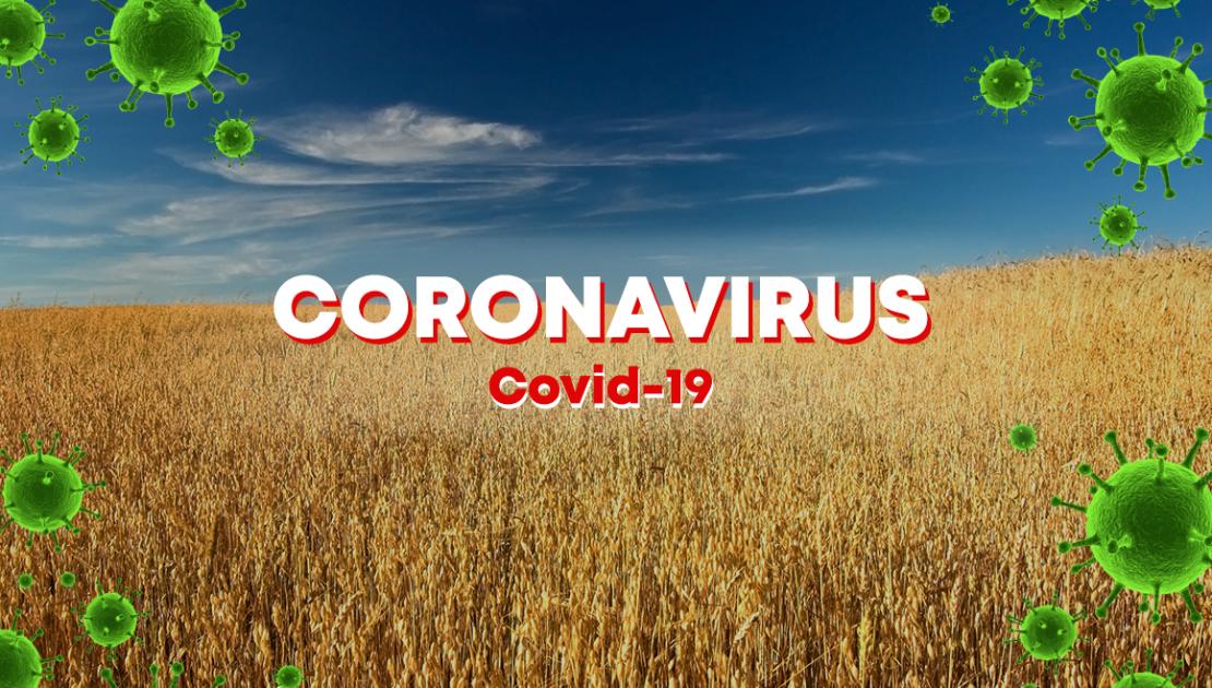 ما مدى تأثر القطاع الزراعي بانتشار فيروس كورونا المستجد؟