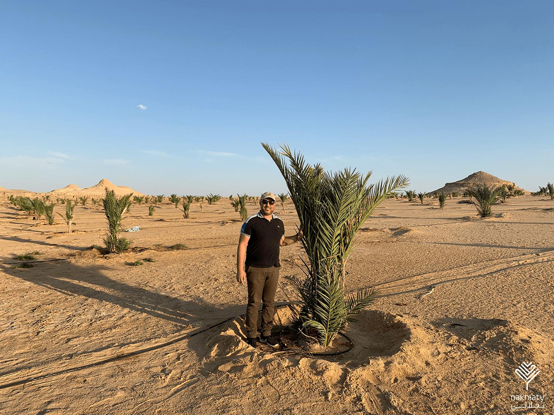 آخر تطورات العملية الزراعية في المرحلة الأولى بتاريخ 17-09-2020